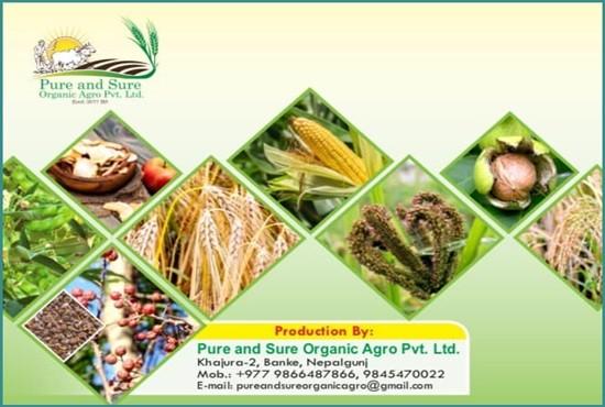 Pure & Sure Organic Agro.