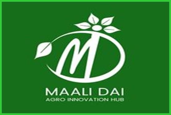 Mali Dai - flower farming