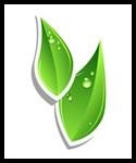 Alternative Bio Energy